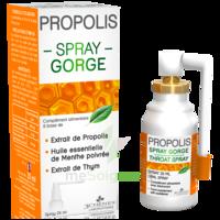 3 CHENES PROPOLIS Spray gorge Fl/25ml à SAINT ORENS DE GAMEVILLE