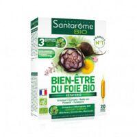 Santarome Bio Bien-être du foie Solution buvable 20 Ampoules/10ml à SAINT ORENS DE GAMEVILLE