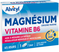 Govital Magnésium Vitamine B6 Comprimés B/45 à SAINT ORENS DE GAMEVILLE