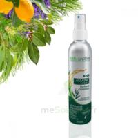 Naturactive Assaini'spray 200ml à SAINT ORENS DE GAMEVILLE