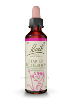 Fleurs de Bach® Original Star of Bethlehem - 20 ml à SAINT ORENS DE GAMEVILLE
